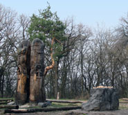 Лысая гора, Языческое капище, Киев