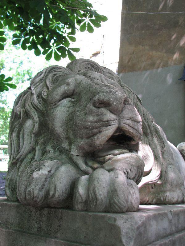 знакомство в поезде киев львов