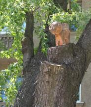 деревяный кот