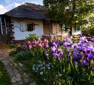 Экскурсия в традиционную украинскую усадьбу